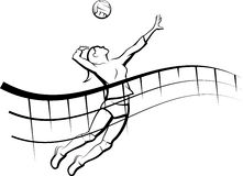 http://www.tvjahn-bad-lippspringe.de/tl_files/artikelbilder/2015/volleyball/VolleyballWerbung.png